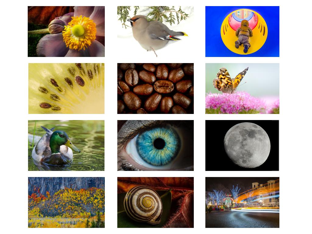calendrier 2016 - des photographies pour toute l'année