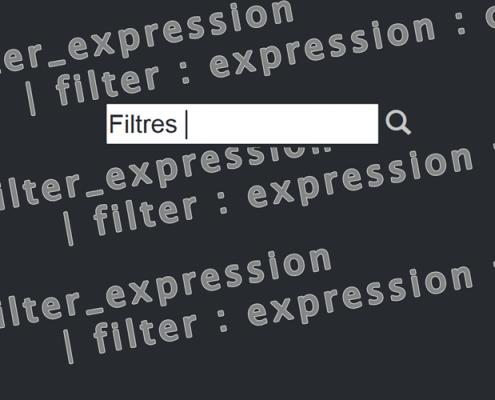 Filtrer avec Angular JS