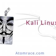 Logo de l'article sur Kali Linux