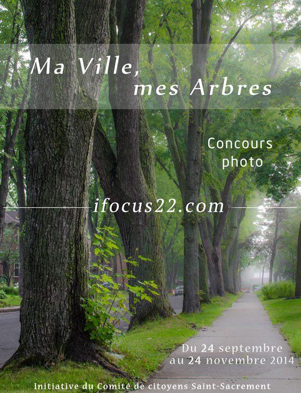 Concours photo - Ma ville, mes Arbres